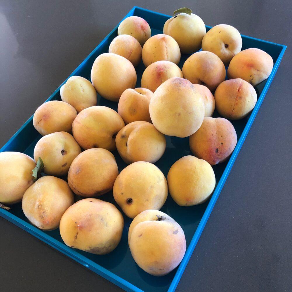 peaches jam conserve kangaroo valley olives